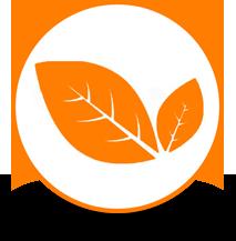 logo naturelle  ardoise naturelle d'espagne